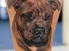 Khan-Tattoo---Realistic-Color-349